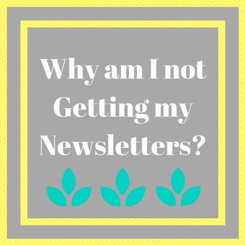 Why am I not getting my newsletters?